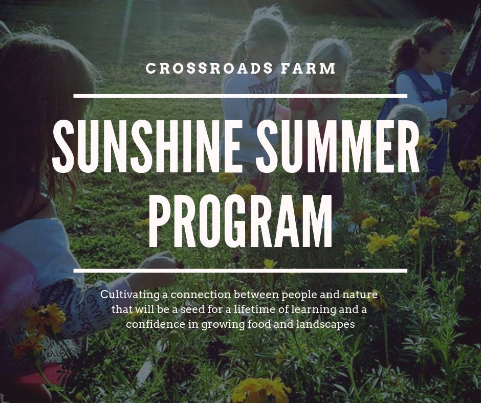 Summer Sunshine Program