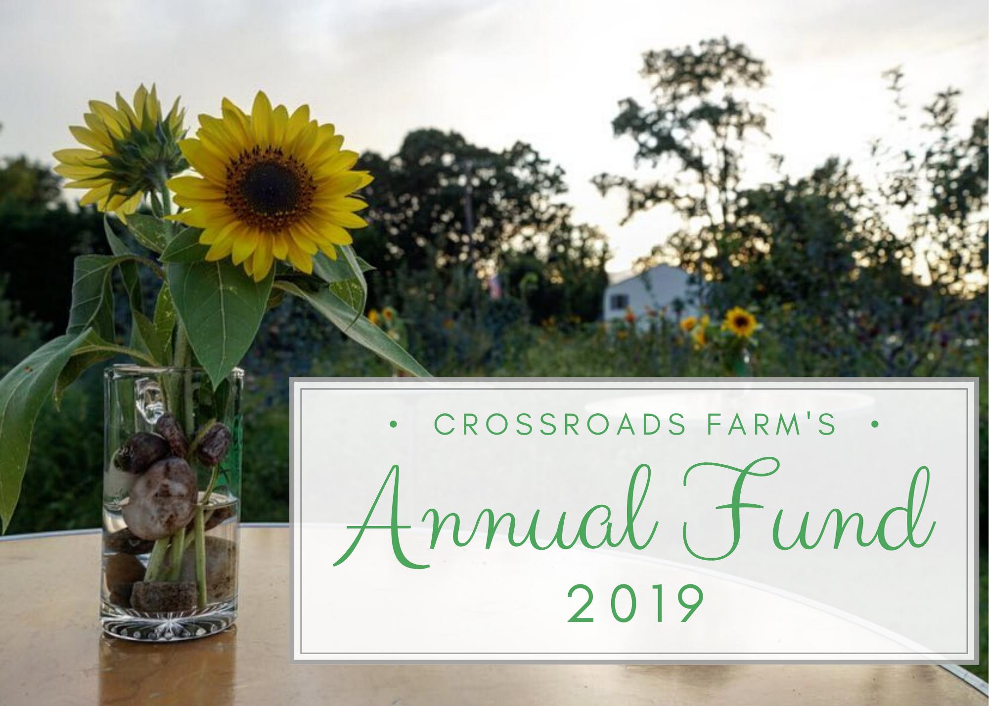 annual fund 1
